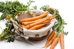 Carrots in the basket Stock Photos
