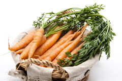 Carrots in the basket Royalty Free Stock Image