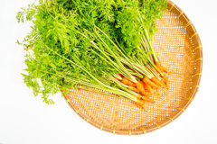 Carrots on basket Stock Photo