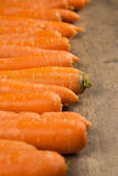 Carrots. Basket of carrots on wood royalty free stock photo