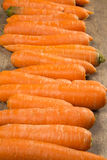 Carrots. Basket of carrots on wood royalty free stock image
