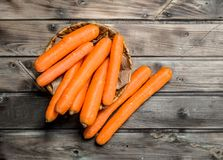 Carrots in the basket stock photography
