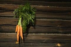 Carrots beam Stock Photography