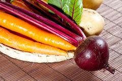 Carrots, beet and potato Stock Images
