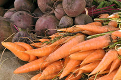 Carrots and Beetroot Royalty Free Stock Photo