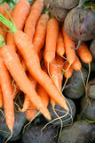 Carrots and beetroots. On a market place. Soft diffused lighting Stock Photos