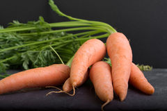 Carrots on a black background Royalty Free Stock Images