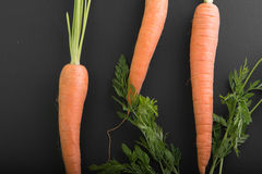 Carrots on a black background Stock Images