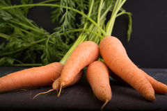 Carrots on a black background Stock Photos