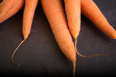Carrots on a black background Royalty Free Stock Photos