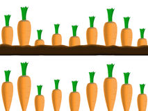 Carrots borders Stock Images