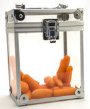 Carrots in a Box. Image of carrots in a clear box Stock Photo