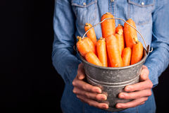 Carrots bucket in hands Royalty Free Stock Photography