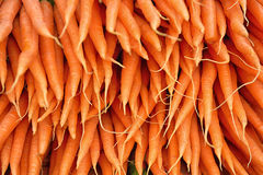 Carrots. Bunch of fresh carrots in market Stock Photography