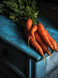 Carrots bunch freshness harvest carotene antioxidant vitamin for recipes. On old table rustic background Low key moon light Stock Images