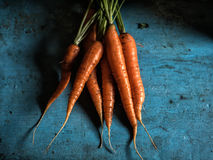 Carrots bunch freshness harvest carotene antioxidant vitamin for recipes. On old table rustic background Low key moon light Royalty Free Stock Photo