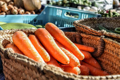 Carrots Royalty Free Stock Image