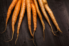 Carrots stock photography