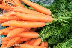 Carrots 2 Royalty Free Stock Images