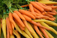 Carrots. Royalty Free Stock Photography