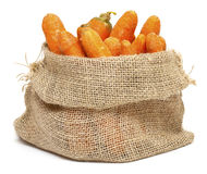 Carrots in a burlap bag Royalty Free Stock Images
