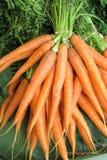 Carrots - carrots Royalty Free Stock Photography