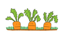 Carrots Cartoon Royalty Free Stock Images