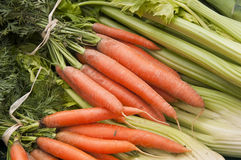 Carrots and celery Stock Photography