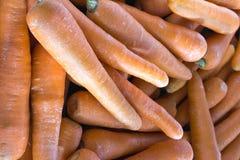 Carrots Closeup Background Stock Photography