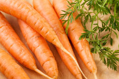 Carrots closeup Stock Photo