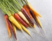 Carrots. Colorful carrots on a gray ceramic background Stock Image