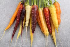 Carrots. Royalty Free Stock Images