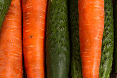 Carrots and cucumbers close-up. Healthy food. Fresh vegetables from the garden Royalty Free Stock Photography