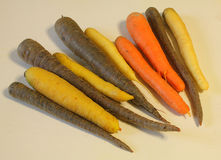 Carrots of different colors. Some carrots of different colors Stock Images