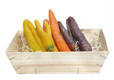 Carrots of different colors Royalty Free Stock Images