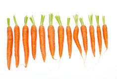 Carrots of different sizes and shapes Stock Photos