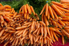 Carrots on display at the farmer's market Stock Photos