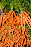 Carrots on display at the market. Fresh picked bunches of carrots on display at the farmer's market Stock Photo