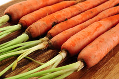 Carrots Royalty Free Stock Photos
