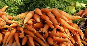 Carrots  at the farm stand in Vermont Royalty Free Stock Images