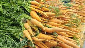 Carrots at a farmer's market Royalty Free Stock Image
