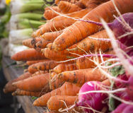 Carrots in a Farmers Market. Fresh picked Carrots and other vegetables in a farmers market stall in New York's Hudson Valley Stock Image