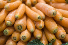 Carrots on farmers market Stock Images