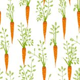 Carrots Freehand Drawing Seamless Pattern Royalty Free Stock Image