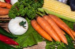 Carrots and fresh greenery Royalty Free Stock Photos