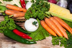 Carrots and fresh greenery Stock Photo