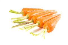 Carrots. Fresh red carrots on white background Stock Image