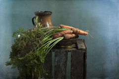 Carrots from a garden bed Royalty Free Stock Images