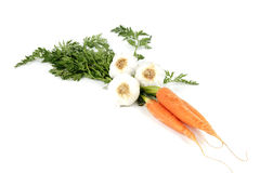 Carrots and Garlic Royalty Free Stock Photography