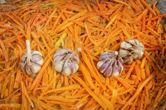 Carrots and garlic are roasted in a large frying pan on the street to prepare a traditional Asian dish of pilaf. Close-up royalty free stock image